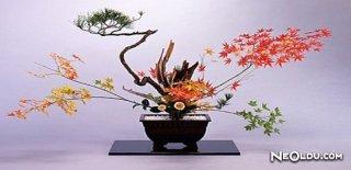 Japon Çiçek Sanatı İkebana Nedir ve Nasıl Yapılır?