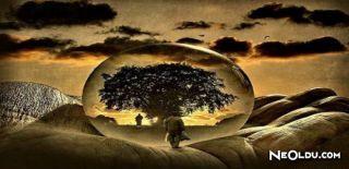 Ünlü Filozoflardan Meşhur Felsefi Sözler, Felsefi Aşk Sözler