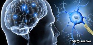 Multiple Skleroz Teşhisi ve Tedavi Yöntemleri