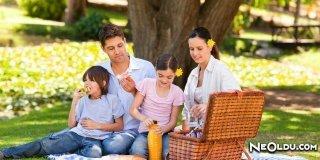 İstanbul'un En güzel Piknik ve Mangal Yerleri