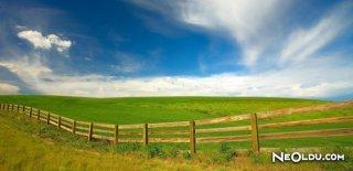 Rüyada Arazi Görmek Ne Anlama Gelir?