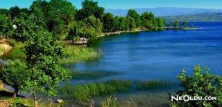 Rüyada Göl Görmek Ne Anlama Gelir?