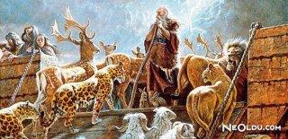 Rüyada Nuh Peygamber'i Görmek Ne Anlama Gelir?