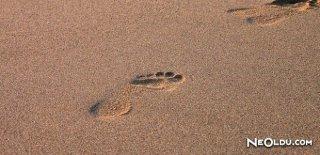 Rüyada Ayak İzi Görmek Ne Anlama Gelir?