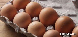Rüyada Bozuk Yumurta Görmek Ne Anlama Gelir?