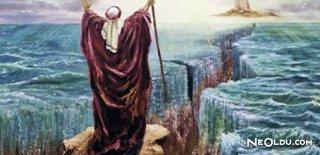 Rüyada Hz. Musa'yı Görmek Ne Anlama Gelir?