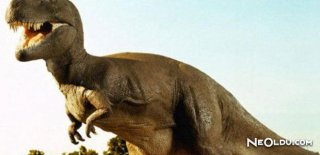 Rüyada Dinozor Görmek Ne Anlama Gelir?