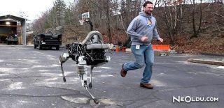 Bu Robot Denge Dersi Veriyor