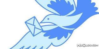 Falda Kuşun Ağzında Mektup Görmek Ne Anlama Gelir?