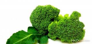 Kanser Savaşçısı Brokoli