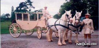 Falda At Arabası Görmek Ne Anlama Gelir?