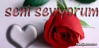 100 Dilde Seni Seviyorum, Farklı Dillerde Seni Seviyorum Demek