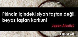 En Güzel Japon Atasözleri, Özlü Japon Atasözleri