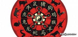 Çin Takvimine Göre Çin Burcunuz Nedir?