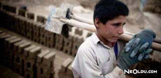 Çocuk İşçi Kimdir? Çocuk İşçi Çalıştırma Şartları Nelerdir?