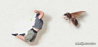 Entomofobi Hakkında Bilinmesi Gerekenler