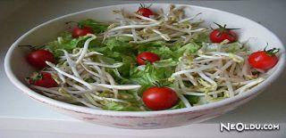 Soya Filizi Salatası Tarifi