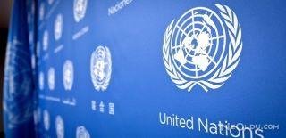 Kolombiya'da BM Görevlisi Kaçırıldı