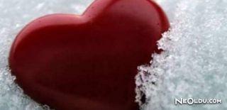 Kalp Sembolü Kalbe Benziyor Mu?