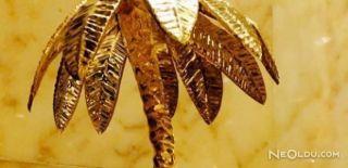 Altın Palmiye Ödül Töreni Gerçekleşti!