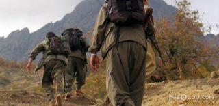 Şırnak'ta 5 PKK'lı Teslim Oldu!