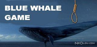 """""""Blue Whale Game"""" Gençleri İntihara Sürüklüyor"""