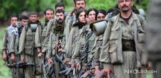 Sözde Bölge Sorumlusu PKK'lı Öldürülmüş
