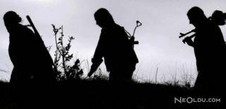 Bitlis'te PKK'nın Karakutusu Öldürüldü