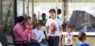 Çeşme'de, 29 Kaçak Göçmen Yakaladı