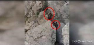 Teröristlerin Teslim Olma Görüntüleri Paylaşıldı