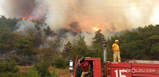 İzmir'deki Yangın Ormana Sıçradı