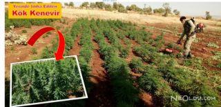 Diyarbakır'da Dev Uyuşturucu Operasyonu!