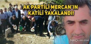 AK Partili Mercan'ı Öldüren Saldırgan Yakalandı
