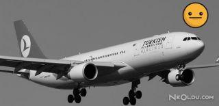Uçak Cezayir'e Acil İniş Yaptı