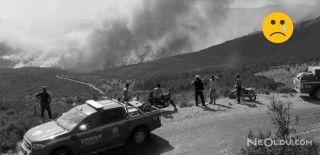 İzmir'den Yangın Yayıldı
