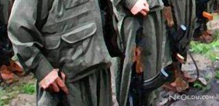 PKK'nın Kilit İsmi Teslim Oldu