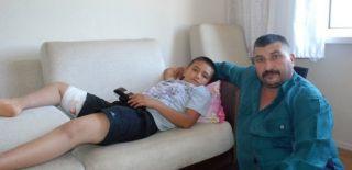 Eskişehir'de Köpekler Çocuğa Saldırdı