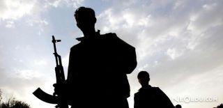 Van'da 2 PKK'lı Terörist Öldürüldü