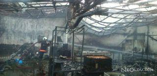 Ankara'daki Yangında Güvercin Alarmı!