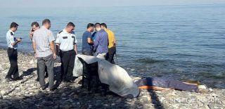 Çınarcık Halk Eğitim Müdürü Denizde Ölü Bulundu