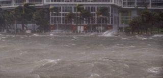 Miami Sular Altında