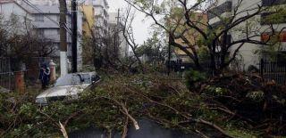 Maria Kasırgası Porto Riko'yu Yerle Bir Etti!