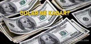 Vize Krizi Sonrası Dolar ve Euro Tırmanışa Geçti