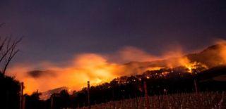Kaliforniya'daki Yangında Ölü Sayısı 38'e Yükseldi