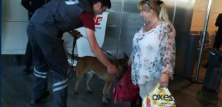 Avusturya Yolcuları Köpeklerle Arandı