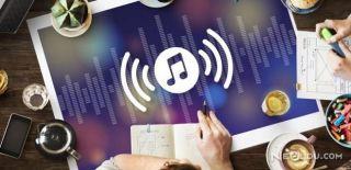 Seslendirme Sanatının Püf Noktaları Nelerdir?