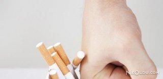 Sigaranın Sağlığa Verdiği Zararlar
