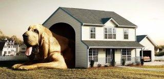 Mimarisiyle Şaşırtan Dünyadaki En İlginç 10 Ev