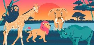 20 Hayvan Hakkında Doğru Bilinen 20 Yanlış Bilgi!