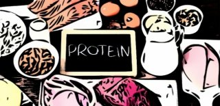 Protein Hakkında 21 İlginç Gerçek!